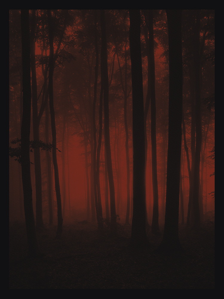 anonymous ink crimson_forest_medium