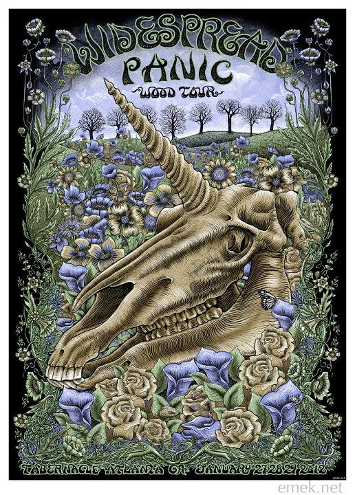 emek widespread panic wood tour