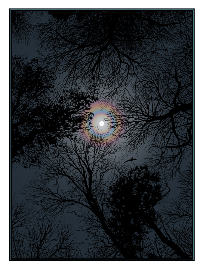 mccarthy night sky
