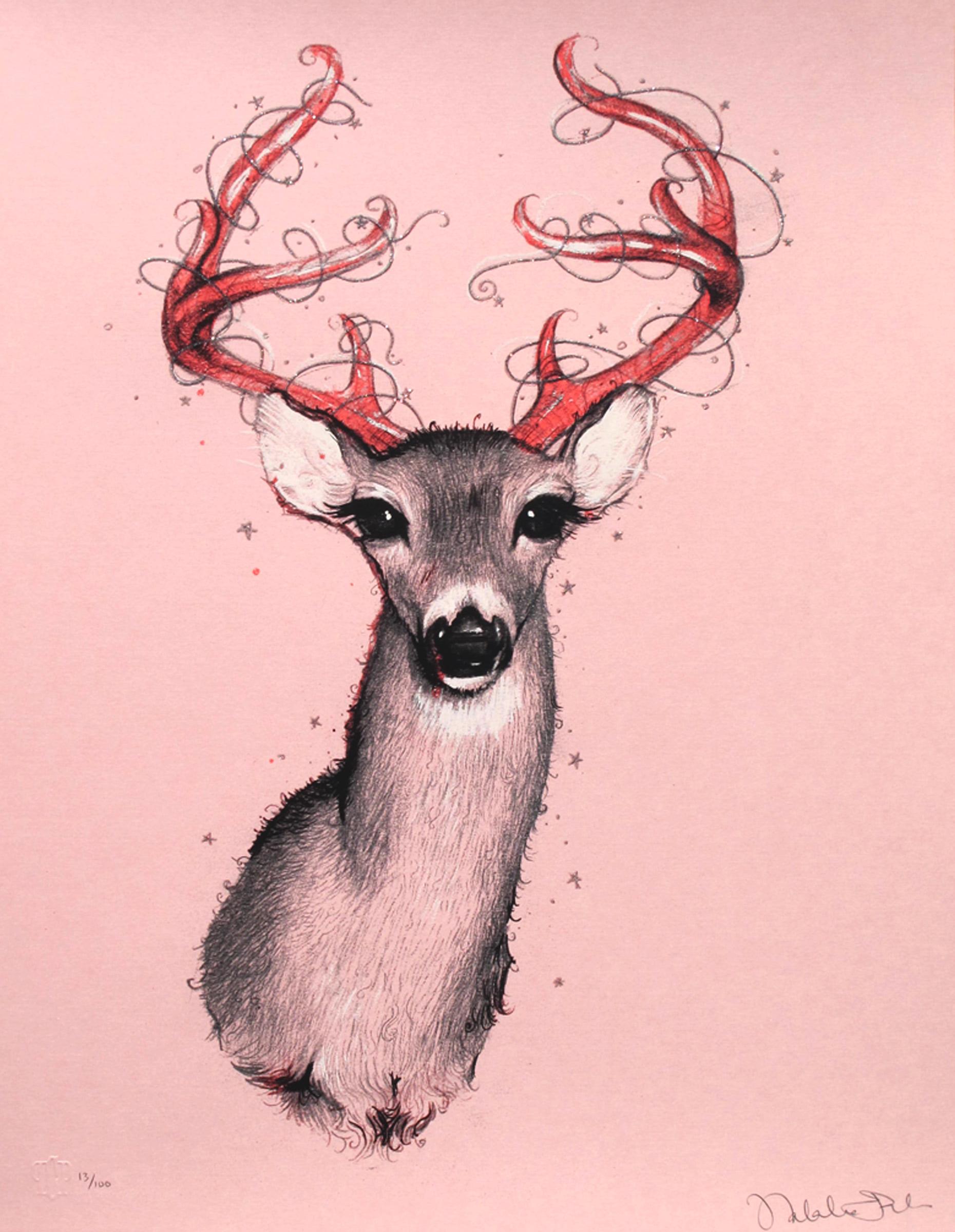 fabia oh deer