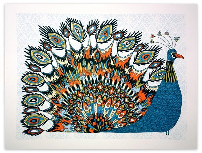duval fancy peacock