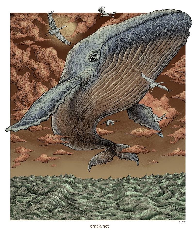emek whale