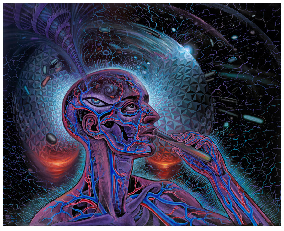 mars 1 alex grey bicycle day