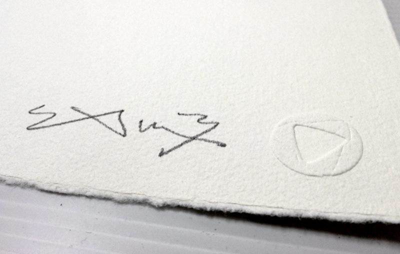 SAM3-Siesta-Detail02