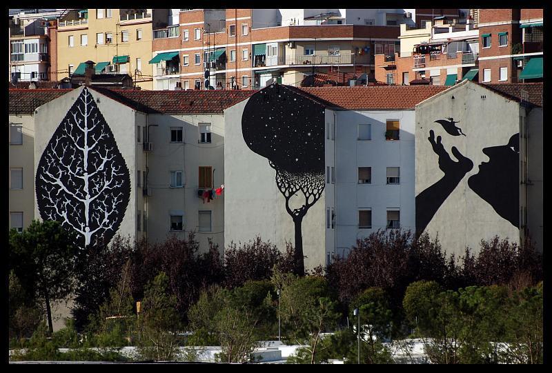 SAM3-Siesta-Madrid