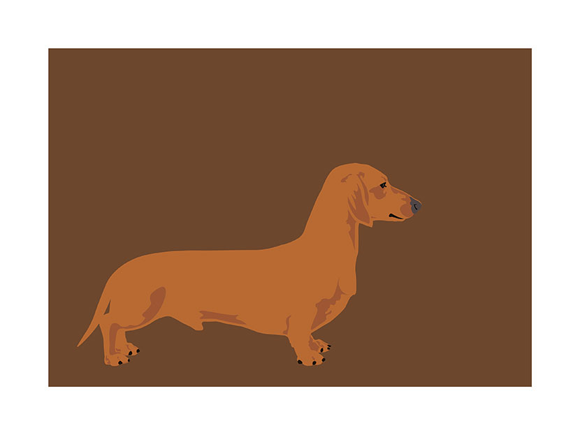kapp Wiener-Dog