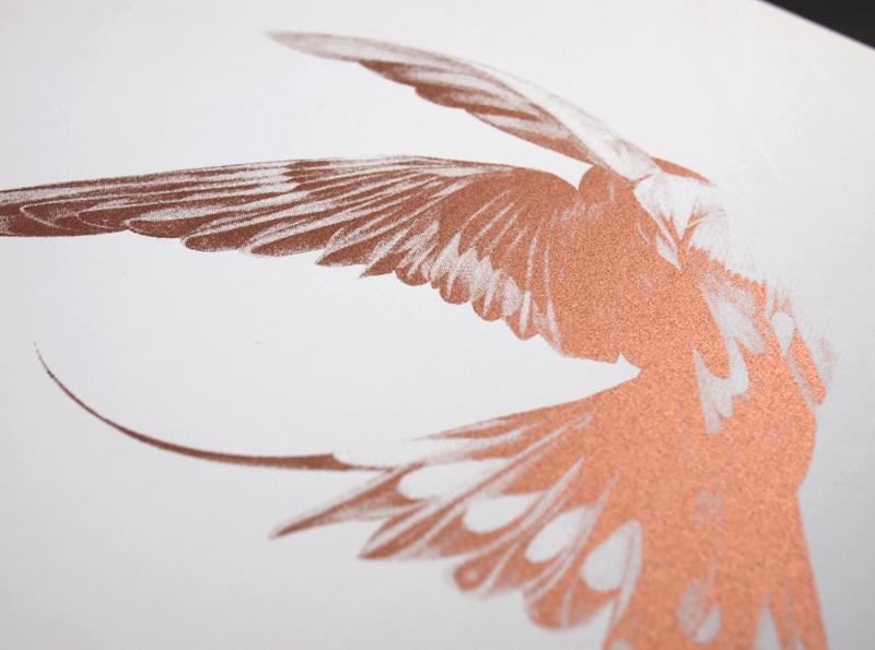von bird 17 1