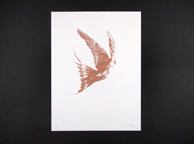 von bird 17