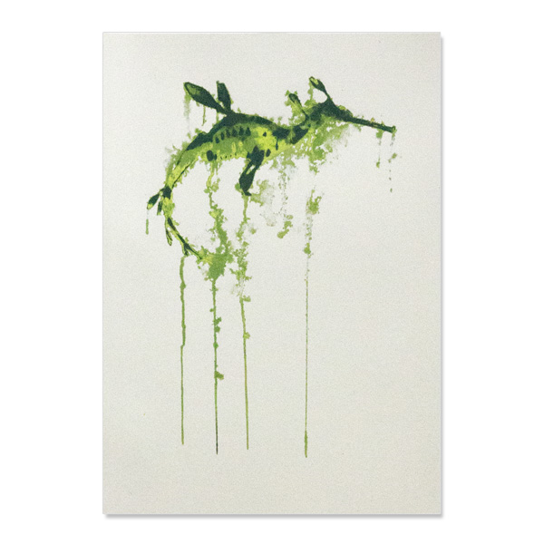 Tattersall weedy seadragon