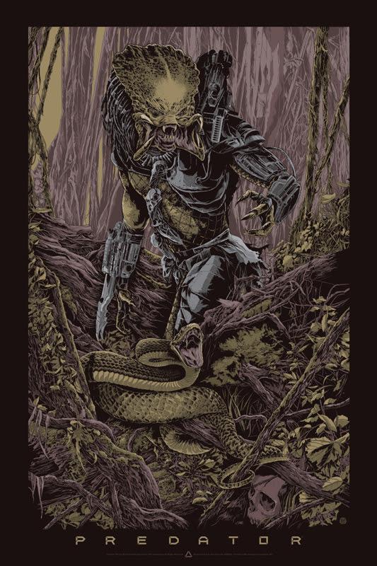 taylor predator