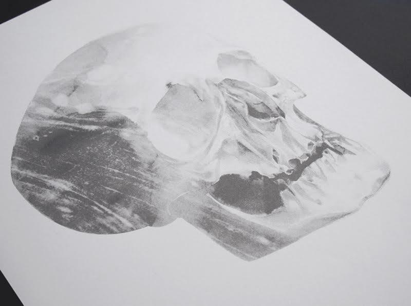 von skull 01 a