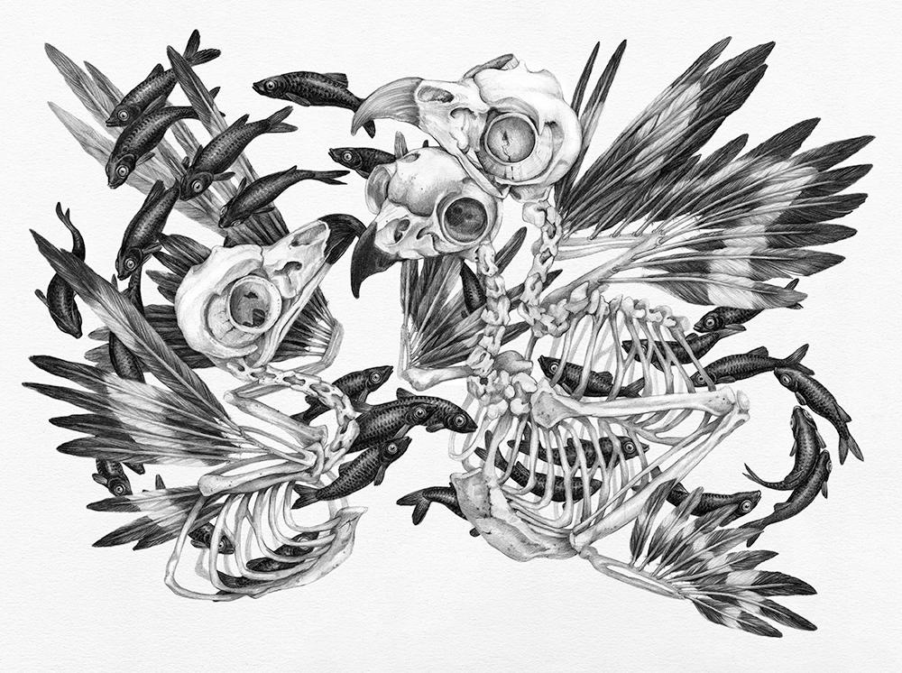 Christina Mrozik Zoe Keller Intricacies 1 Owl Skulls