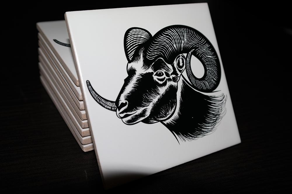 noa the goat