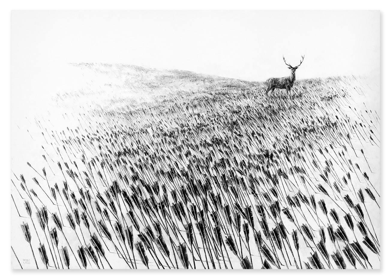 pejac meadow