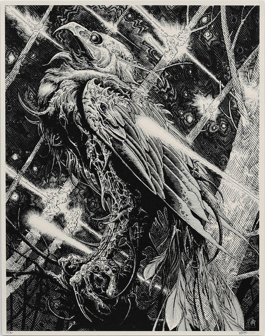 holt phoenix