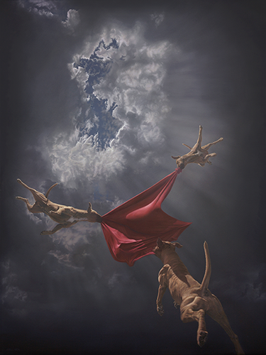 """Return to Genesis"" by Joel Rea. Giclee.  66 x 51cm (Ed of 100, $260) : 116 x 91cm (Ed of 10, $1300)"