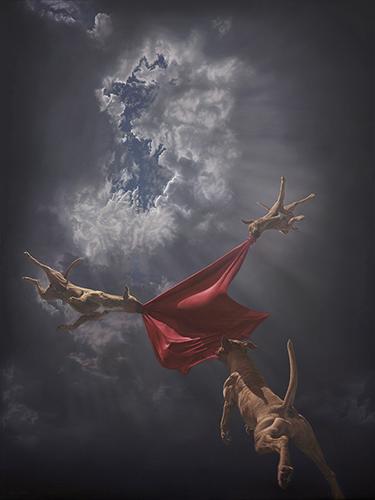 """Return to Genesis"" by Joel Rea. Giclee.  66 x 51cm (Ed of 100, $260) : 116 x 91cm (Ed of 10, $1300)"