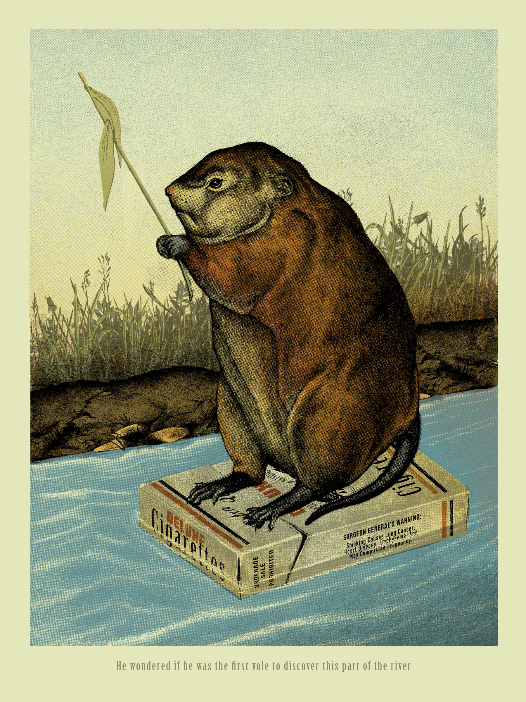"""The First Vole"" by Arna Miller.  18"" x 24"" 5-color Screenprint.  Ed of 25 S/N.  $40"