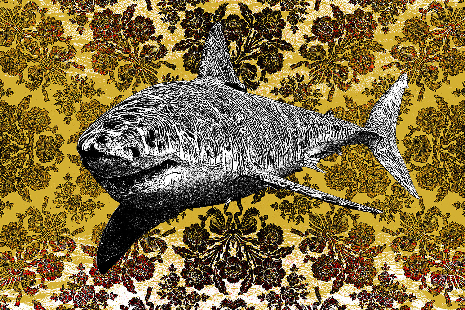 """Blunk Shark"" by Matt Dye.  18"" x 12"" 3-color Screenprint.  Ed of 20 S/N.  $45"