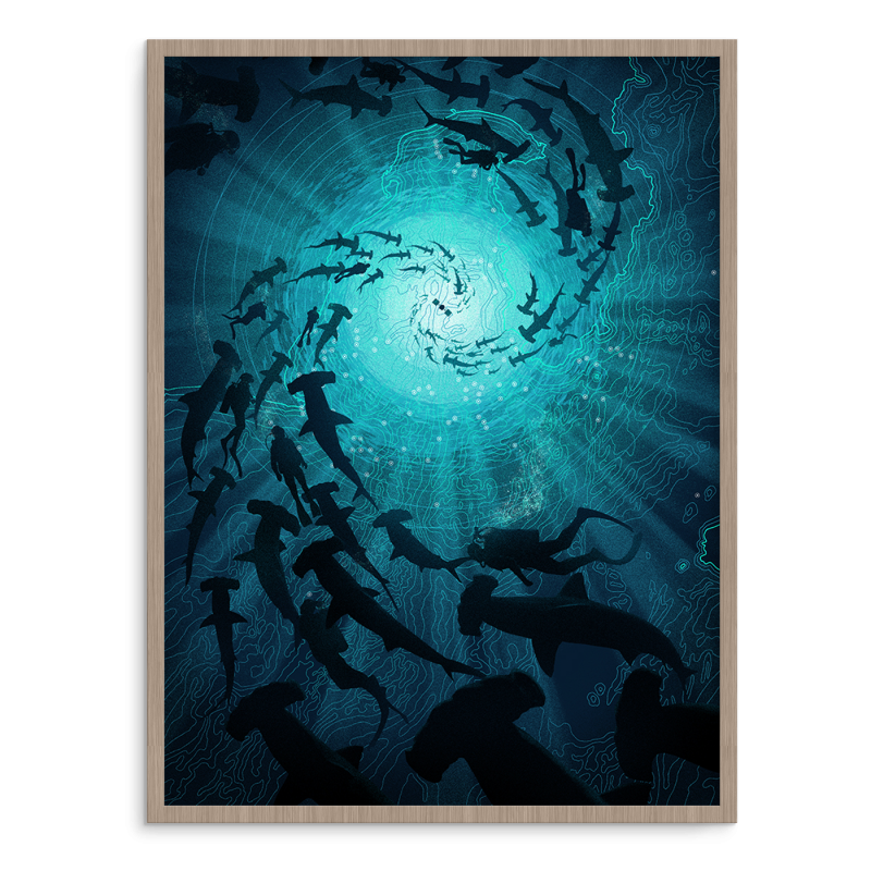 """Rising Hammerheads"" by Marko Manev.  18"" x 24"" 5-color Screenprint w/ metallics.  Ed of 25 S/N.  $85 Shimokuzame Variant (Blue)"
