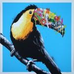 whatson toucan blue