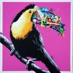 whatson toucan pink